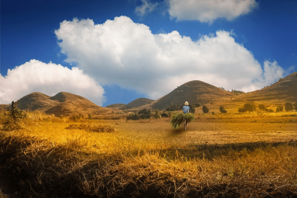 madagascar-tourisme